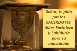 Felicidades Sacerdotes